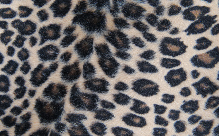 PELO CORTO ANIMAL PRINT - KINDO --- COLOR 7